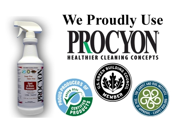 Procyon Healthier Cleaning Concepts