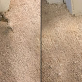 Carpet Repair