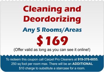 Carpet Cleaning and Deodorizing Coupon